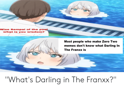 """Anime, Memes, and Zero: wise Sempai of the pool  what is you wisdom?  Most people who make Zero Two  memes don't know what Darling In  The Franxx is """"What's Darling in The Franxx?"""""""
