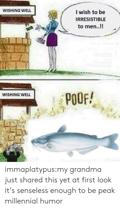 Wishing Well: WISHING WELL  I wish to be  IRRESISTIBLE  to men..!!  WISHING WELL  POOF! immaplatypus:my grandma just shared this yet at first look it's senseless enough to be peak millennial humor