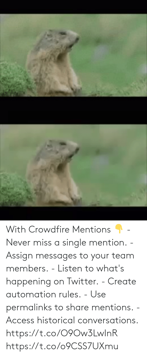 create: With Crowdfire Mentions 👇 - Never miss a single mention. - Assign messages to your team members. - Listen to what's happening on Twitter. - Create automation rules. - Use permalinks to share mentions. - Access historical conversations.  https://t.co/O9Ow3LwInR https://t.co/o9CSS7UXmu