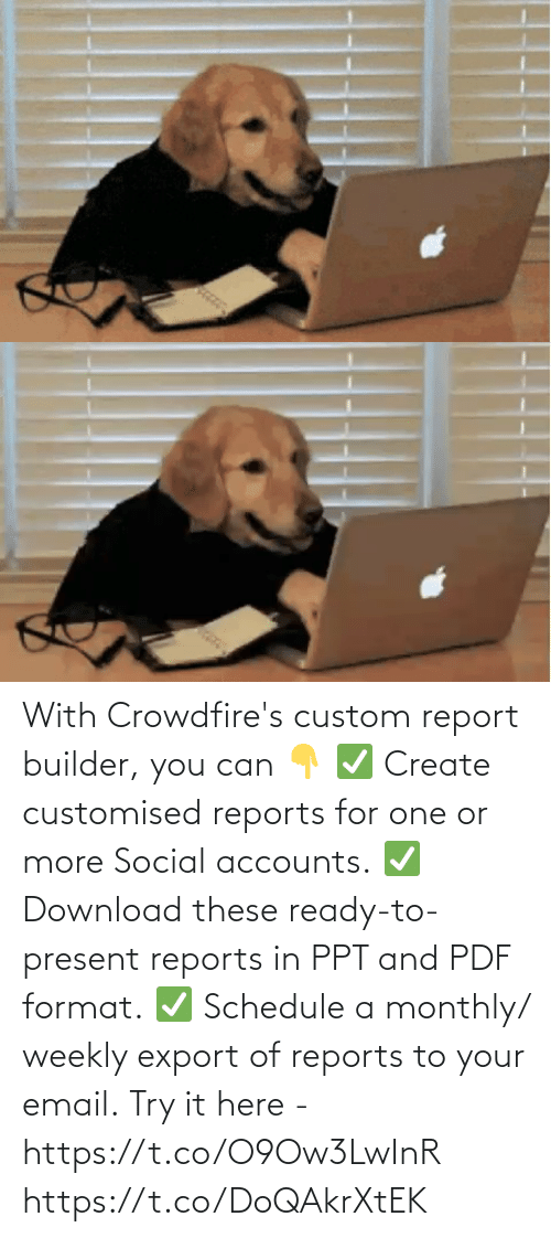 create: With Crowdfire's custom report builder, you can 👇 ✅ Create customised reports for one or more Social accounts. ✅ Download these ready-to-present reports in PPT and PDF format. ✅ Schedule a monthly/ weekly export of reports to your email.  Try it here - https://t.co/O9Ow3LwInR https://t.co/DoQAkrXtEK
