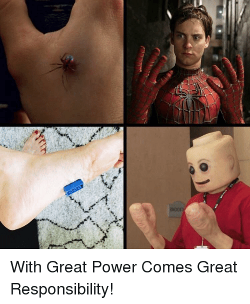 Power, Responsibility, and Great: With Great Power Comes Great Responsibility!
