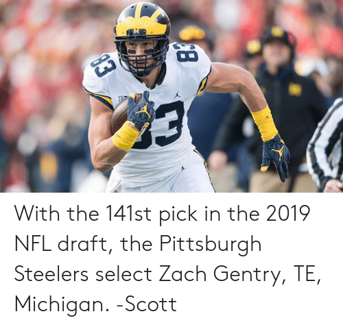 Memes, Nfl, and NFL Draft: With the 141st pick in the 2019 NFL draft, the Pittsburgh Steelers select Zach Gentry, TE, Michigan.   -Scott