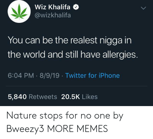 Iphone 5: Wiz Khalifa  @wizkhalifa  You can be the realest nigga in  the world and still have allergies.  6:04 PM 8/9/19 Twitter for iPhone  5,840 Retweets 20.5K Likes Nature stops for no one by Bweezy3 MORE MEMES