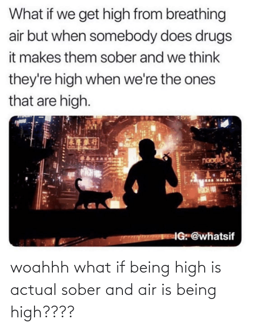 Sober: woahhh what if being high is actual sober and air is being high????