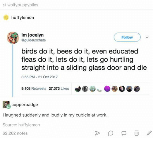 Educated: wolfypuppypiles  huffylemon  im jocelyn  @guldeuxchats  Follow  birds do it, bees do it, even educated  fleas do it, lets do it, lets go hurtling  straight into a sliding glass door and die  3:55 PM-21 Oct 2017  9,108 Retweets 27,373 Likes  copperbadge  I laughed suddenly and loudly in my cubicle at work.  Source: huffylemon  62,262 notes