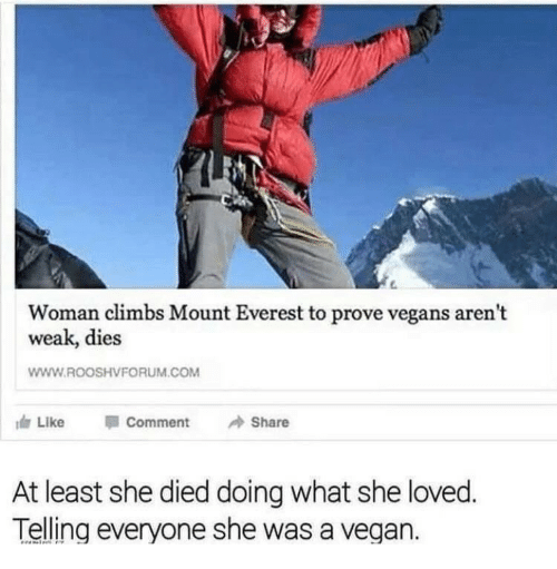 everest: Woman climbs Mount Everest to prove vegans arent  weak, dies  WWW.ROOSHVFORUM.COM  Like  Comment  Share  At least she died doing what she loved  Telling everyone she was a vegan.