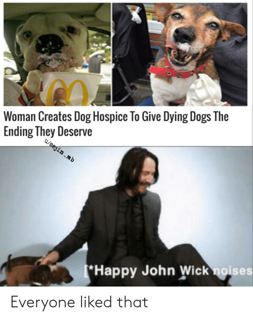 Dogs, John Wick, and Happy: Woman Creates Dog Hospice To Give Dying Dogs The  Ending They Deserve  u/sejin mb  (*Happy John Wick noises Everyone liked that