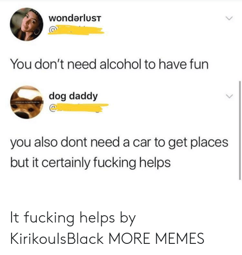 Alcoholes: wondarlusT  You don't need alcohol to have fun  dog daddy  you also dont need a car to get places  but it certainly fucking helps It fucking helps by KirikouIsBlack MORE MEMES