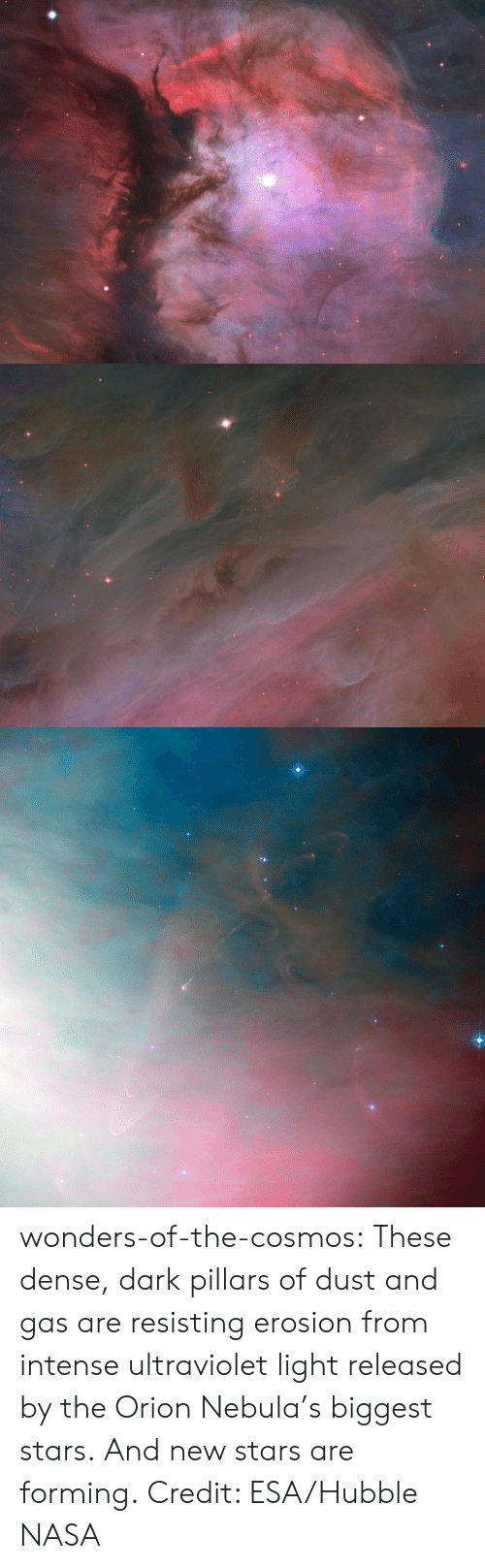 Nasa, Target, and Tumblr: wonders-of-the-cosmos:    These dense, dark pillars of dust and gas are resisting erosion from intense ultraviolet light released by the Orion Nebula's biggest stars. And new stars are forming. Credit: ESA/Hubble  NASA