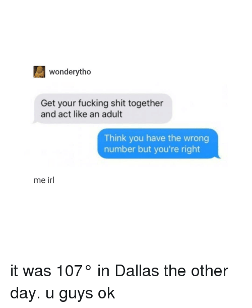 You Have The Wrong Number: wonderytho  Get your fucking shit together  and act like an adult  Think you have the wrong  number but you're right  me irl it was 107° in Dallas the other day. u guys ok