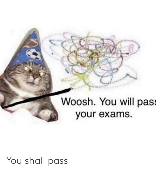 exams: Woosh. You will pass  your exams. You shall pass