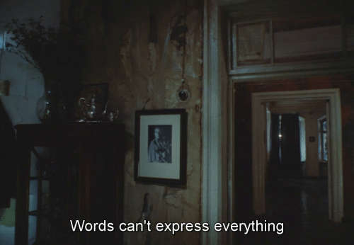 Express, Words, and Everything: Words can't express everything