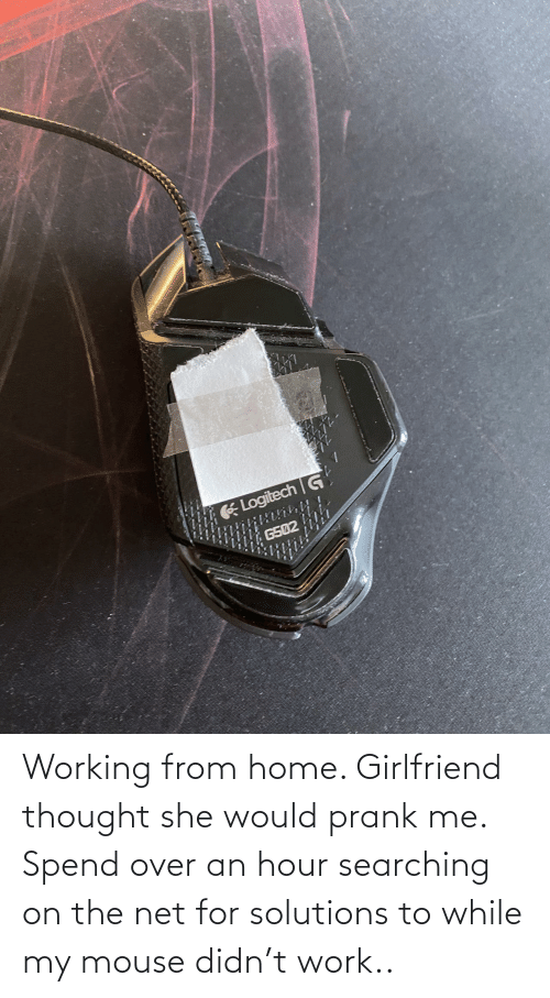 Girlfriend: Working from home. Girlfriend thought she would prank me. Spend over an hour searching on the net for solutions to while my mouse didn't work..