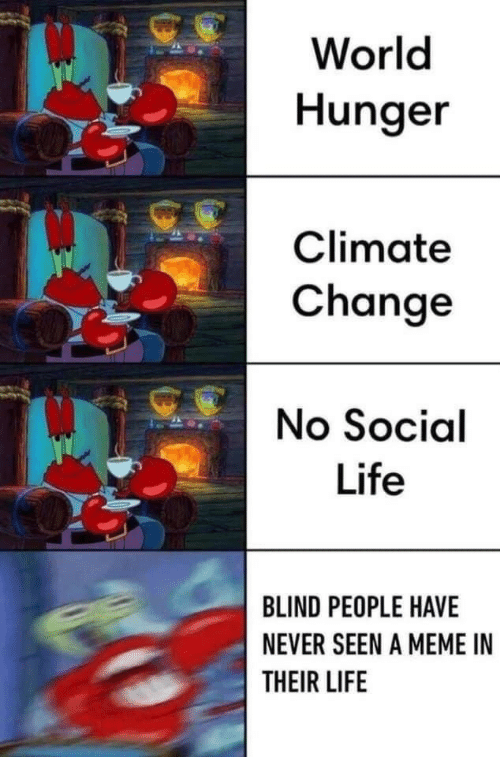 Life, Meme, and World: World  Hunger  Climate  Change  No Social  Life  BLIND PEOPLE HAVE  NEVER SEEN A MEME IN  THEIR LIFE