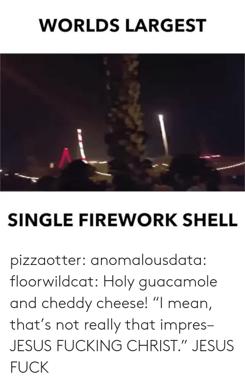 "Guacamole: WORLDS LARGEST  SINGLE FIREWORK SHELL pizzaotter:  anomalousdata:  floorwildcat: Holy guacamole and cheddy cheese! ""I mean, that's not really that impres–JESUS FUCKING CHRIST.""   JESUS FUCK"