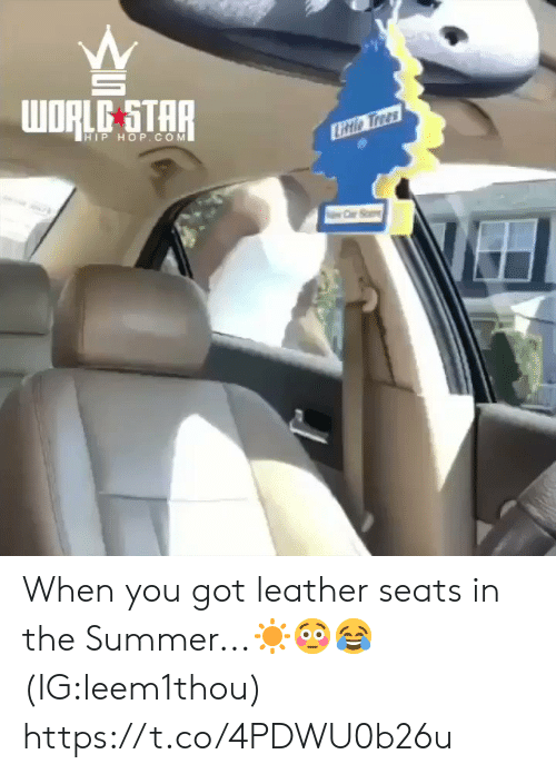 Summer, Star, and Trees: WORLE STAR  HIP HOP.COM  Litio Trees When you got leather seats in the Summer...☀️😳😂 (IG:leem1thou) https://t.co/4PDWU0b26u