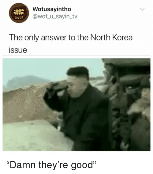 """North Korea, Good, and Girl Memes: Wotusayintho  @wot u_sayin tv  9000  The only answer to the North Korea  issue """"Damn they're good"""""""