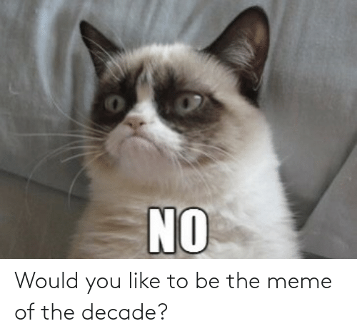Would: Would you like to be the meme of the decade?