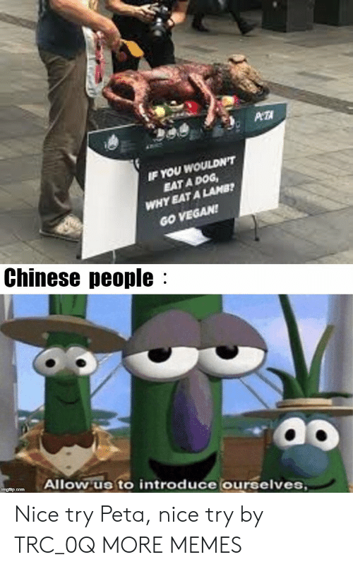 nice try: WOULDN'T  EAT A DOG  YEAT A LAMB  IF YOU  WHY  GO VEGAN  Chinese people:  Allow us to introduce ourselves Nice try Peta, nice try by TRC_0Q MORE MEMES