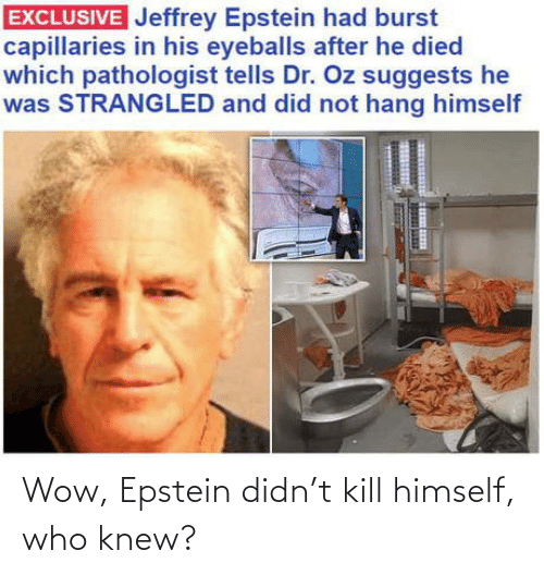 who: Wow, Epstein didn't kill himself, who knew?