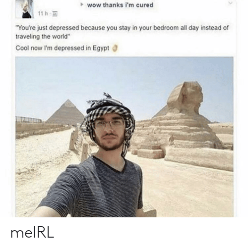 "Wow, Cool, and World: wow thanks i'm cured  11 h  ""You're just depressed because you stay in your bedroom all day instead of  traveling the world""  Cool now I'm depressed in Egypt meIRL"