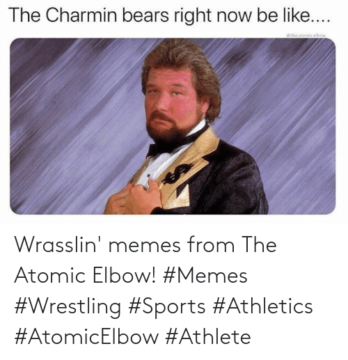 Athletics: Wrasslin' memes from The Atomic Elbow! #Memes #Wrestling #Sports #Athletics #AtomicElbow #Athlete