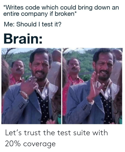 Brain, Test, and Company: *Writes code which could bring down an  entire company if broken*  Me: Should I test it?  Brain: Let's trust the test suite with 20% coverage