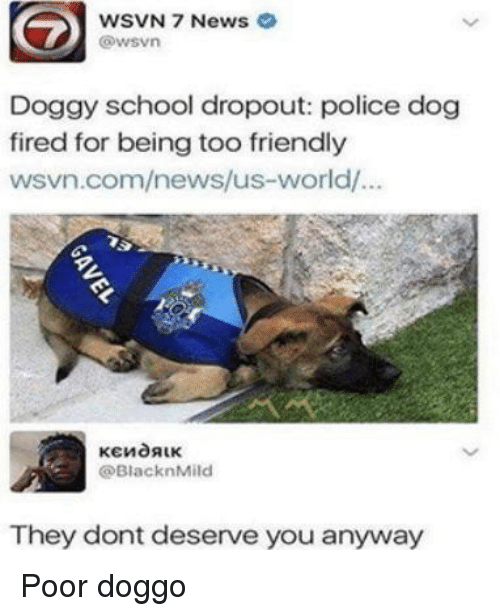 police dog: WSVN 7 News  @wsvn  Doggy school dropout: police dog  fired for being too friendly  wsvn.com/news/us-world/  @BlacknMild  They dont deserve you anyway Poor doggo