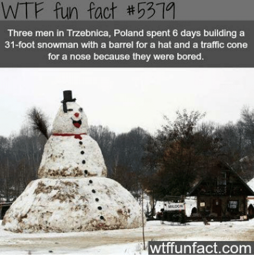Bored, Memes, and Traffic: WTF fun fact #53  Three men in Trzebnica, Poland spent 6 days building a  31-foot snowman with a barrel for a hat and a traffic cone  for a nose because they were bored.  wtffunfact.com