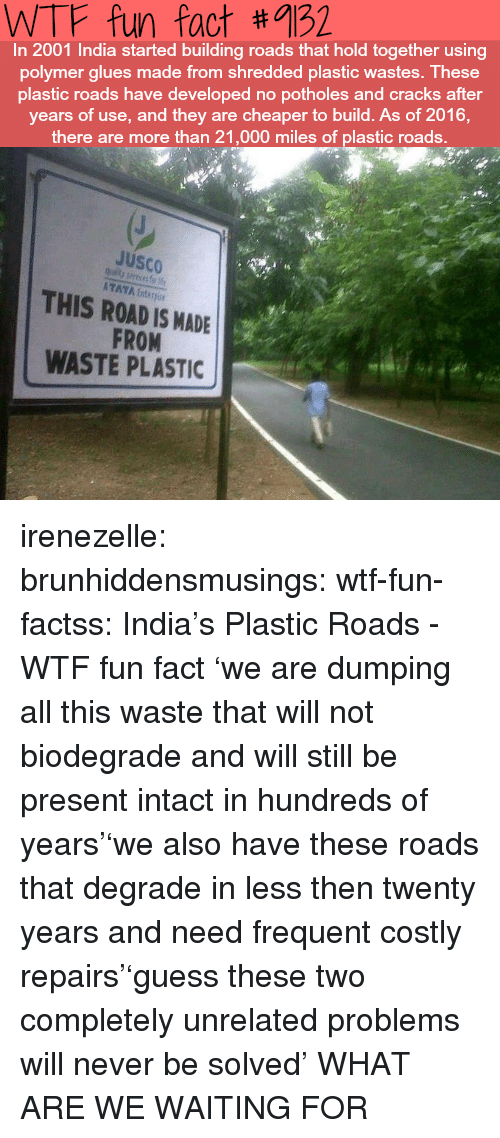 dumping: WTF fun fact #9132  In 2001 India started building roads that hold together using  polymer glues made from shredded plastic wastes. These  plastic roads have developed no potholes and cracks after  years of use, and they are cheaper to build. As of 2016,  there are more than 21,000 miles of plastic roads.  JuSCO  ATAYA Enter  THIS ROAD IS MADE  FROM  WASTE PLASTIC irenezelle: brunhiddensmusings:  wtf-fun-factss: India's Plastic Roads - WTF fun fact 'we are dumping all this waste that will not biodegrade and will still be present intact in hundreds of years''we also have these roads that degrade in less then twenty years and need frequent costly repairs''guess these two completely unrelated problems will never be solved'  WHAT ARE WE WAITING FOR