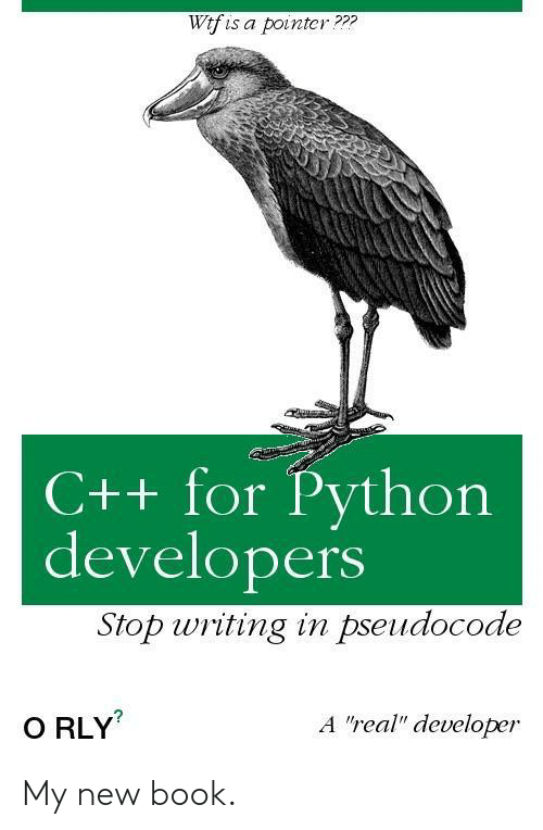 "python: Wtf is a pointcr???  C++ for Python  developers  Stop writing in pseudocode  A ""real"" developer  O RLY My new book."
