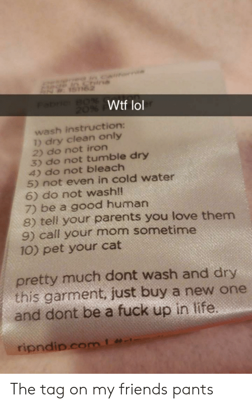 Bleach: Wtf lol  wash instruction:  ) dry clean only  2) do not iron  3) do not tumble dry  4) do not bleach  5) not even in cold water  6) do not wash!  7) be a good human  8) tell your parents you love them  9) call your mom sometime  10) pet your cat  pretty much dont wash and dry  this garment. just buy a new one  and dont be a fuck up in life The tag on my friends pants