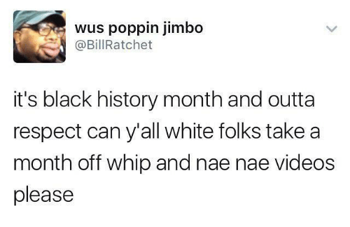 Black History Month, Funny, and Nae Nae: wus poppin jimbo  @Bill Ratchet  it's black history month and outta  respect can y'all white folks take a  month off whip and nae nae Videos  please