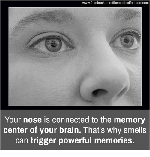 Triggering: www.facebook.com/themedicalfactsdotcom  Your nose is connected to the memory  center of your brain. That's why smells  can trigger powerful memories.