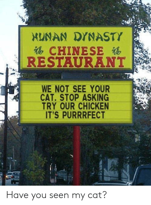 Have You Seen: XUNAN DYNASTY  CHINESE  RESTAURANT  WE NOT SEE YOUR  CAT.STOP ASKING  TRY OUR CHICKEN  IT'S PURRRFECT Have you seen my cat?