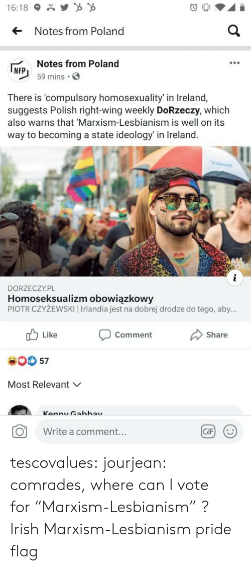 "Gif, Irish, and Tumblr: Y  16:18  a  Notes from Poland  Notes from Poland  NFP  59 mins  There is 'compulsory homosexuality' in Ireland,  suggests Polish right-wing weekly DoRzeczy, which  also warns that 'Marxism-Lesbianism is well on its  way to becoming a state ideology' in Ireland.  i  DORZECZY.PL  Homoseksualizm obowiązkowy  PIOTR CZYŻEWSKI | Irlandia jest na dobrej drodze do tego, aby...  Like  Comment  Share  57  Most Relevant  Kannu Gahhay  GIF  Write a comment... tescovalues: jourjean: comrades, where can I vote for ""Marxism-Lesbianism"" ?  Irish Marxism-Lesbianism pride flag"