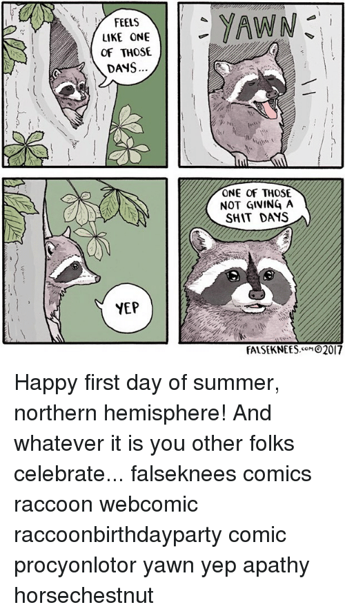 Not Giving A Shit: y FEELS  I  LIKE ONE  OF THOSE  DANS  YEP  YAWN  ONE OF THOSE  NOT GIVING A  SHIT DAYS  FALSEKNEES  2017 Happy first day of summer, northern hemisphere! And whatever it is you other folks celebrate... falseknees comics raccoon webcomic raccoonbirthdayparty comic procyonlotor yawn yep apathy horsechestnut