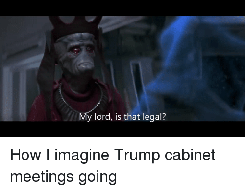 """Ÿ """": y lord, is that legal? How I imagine Trump cabinet meetings going"""