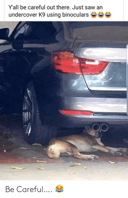 Saw: Y'all be careful out there. Just saw an  undercover K9 using binoculars Be Careful…. 😂