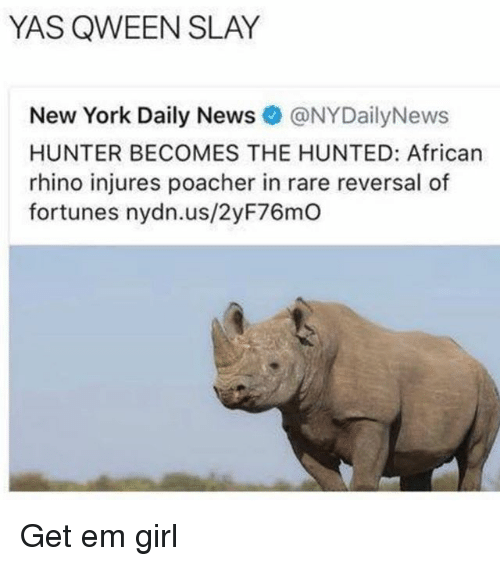 Nydailynews: YAS QWEEN SLAY  New York Daily News@NYDailyNews  HUNTER BECOMES THE HUNTED: African  rhino injures poacher in rare reversal of  fortunes nydn.us/2yF76mO Get em girl