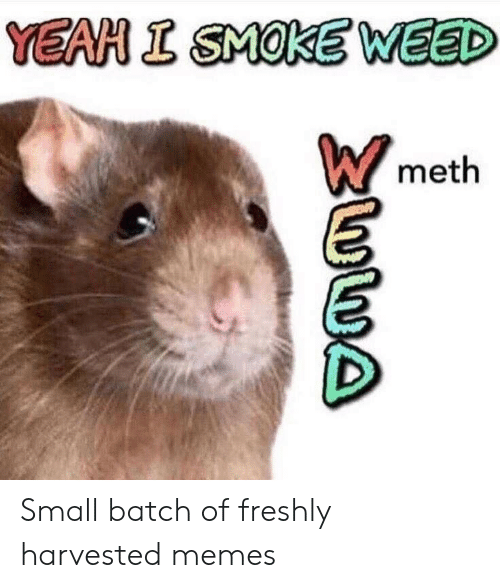 meth: YEAH I SMOKE WEED  meth Small batch of freshly harvested memes