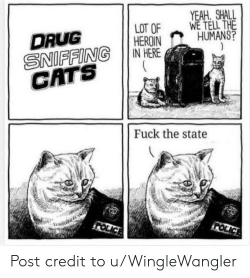 heroin: YEAH SHALL  WE TELL THE  HUMANS?  LOT OF  HEROIN  IN HERE  DRUG  SNIFFING  CATS  Fuck the state  FOLICE  FOLICE Post credit to u/WingleWangler