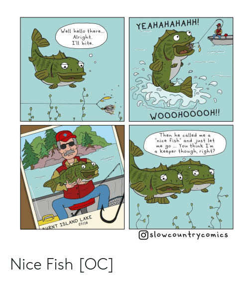"Hello, Fish, and Nice: YEAHAHAHAHH!  Well hello there  Alright.  Ill bite  WOOOHOOOOH!!  Then he called me a  ""nice fish"" and just let  me go You think I'm  a keeper thowgh, right?  07/18  NT ISLAND LAKE  O slowcountrycomics Nice Fish [OC]"