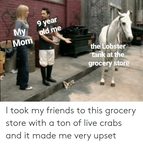 The Lobster: year  My old me  Mom  the Lobster  tank at the  grocery store I took my friends to this grocery store with a ton of live crabs and it made me very upset