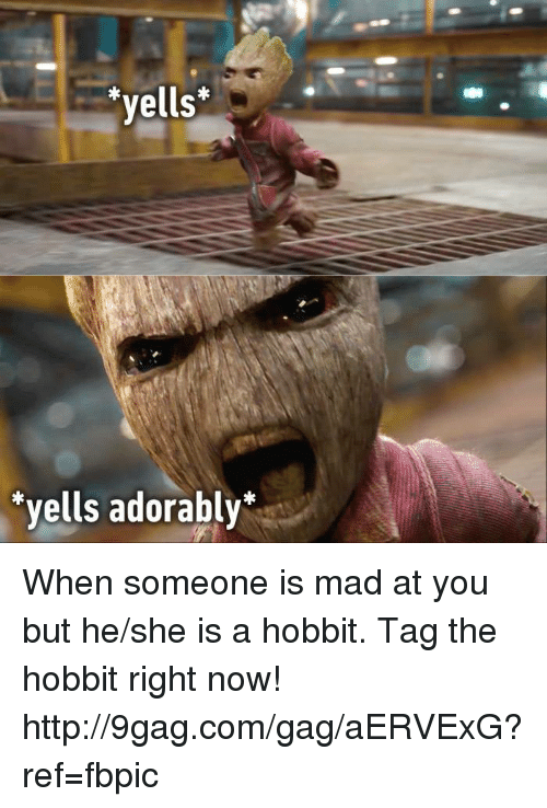 The Hobbits: yells  yells adorably When someone is mad at you but he/she is a hobbit.  Tag the hobbit right now! http://9gag.com/gag/aERVExG?ref=fbpic
