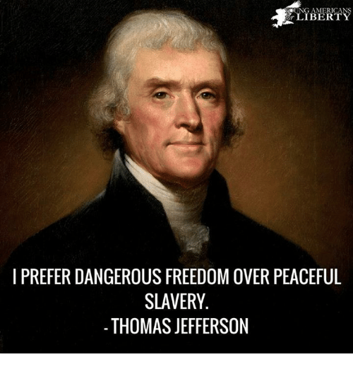 Memes, Thomas Jefferson, and Freedom: YERT  I PREFER DANGEROUS FREEDOM OVER PEACEFUL  SLAVERY  THOMAS JEFFERSON
