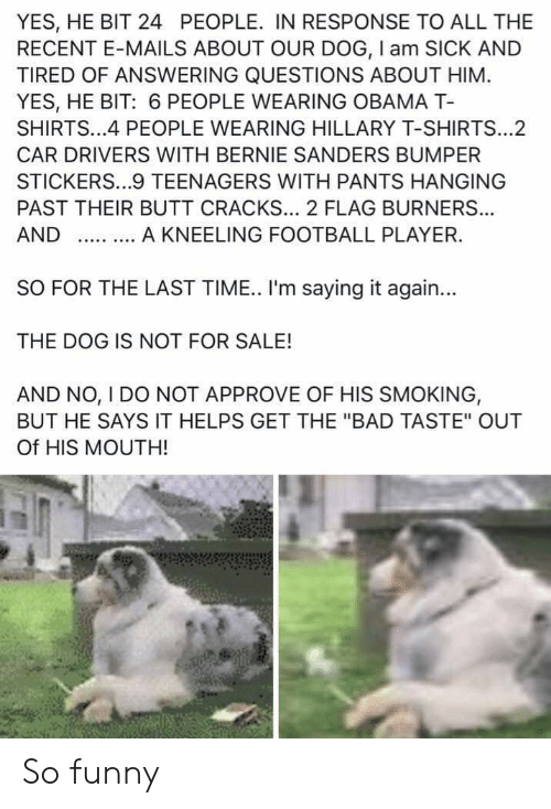 """Bad, Bernie Sanders, and Butt: YES, HE BIT 24 PEOPLE. IN RESPONSE TO ALL THE  RECENT E-MAILS ABOUT OUR DOG, I am SICK AND  TIRED OF ANSWERING QUESTIONS ABOUT HIM  YES, HE BIT: 6 PEOPLE WEARING OBAMA T-  SHIRTS...4 PEOPLE WEARING HILLARY T-SHIRTS...2  CAR DRIVERS WITH BERNIE SANDERS BUMPER  STICKERS...9 TEENAGERS WITH PANTS HANGING  PAST THEIR BUTT CRACKS... 2 FLAG BURNER...  A KNEELING FOOTBALL PLAYER.  AND  SO FOR THE LAST TIME. I'm saying it again...  THE DOG IS NOT FOR SALE!  AND NO, I DO NOT APPROVE OF HIS SMOKING,  BUT HE SAYS IT HELPS GET THE """"BAD TASTE"""" OUT  Of HIS MOUTH! So funny"""