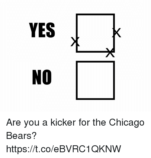 kicker: YES  NO Are you a kicker for the Chicago Bears? https://t.co/eBVRC1QKNW