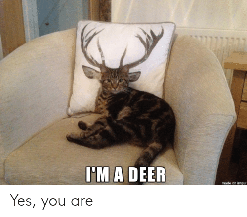 You Are: Yes, you are
