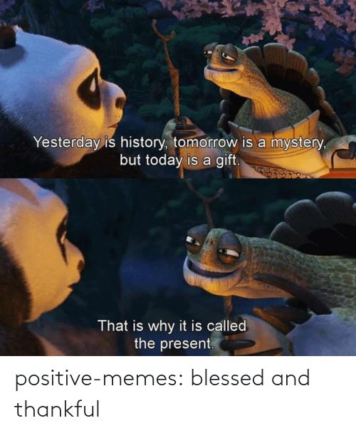 positive: Yesterday is history, tomorrow is a mystery,  but today is a gift.  That is why it is called  the present. positive-memes:  blessed and thankful
